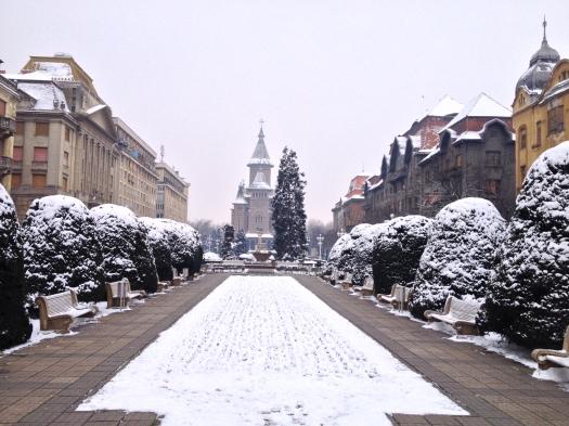 Timisoara has had it's warmest winter, but we did get a little snow a few weeks ago.