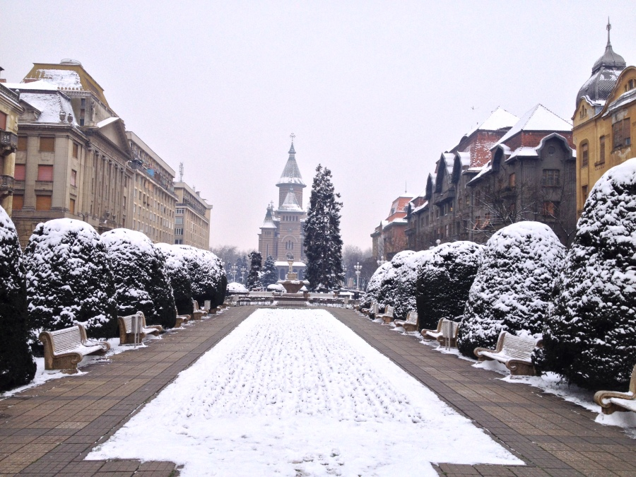 Timisoara has had it's warmest winter, but we did get a little snow a few weeks ago.