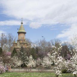 cropped-catedrala.jpg
